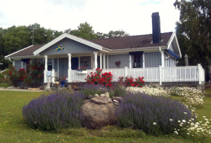 cottage-svedese
